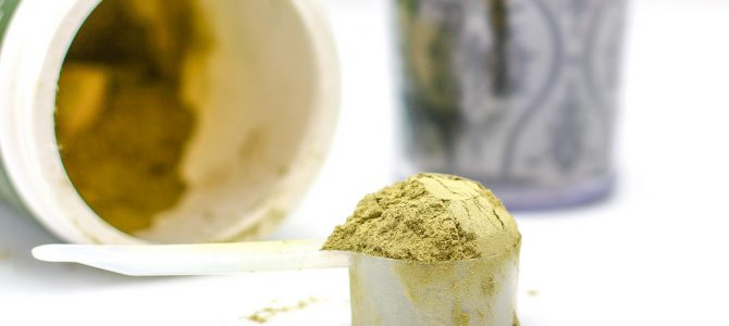 Proteine in polvere: Scopri se ne hai bisogno!